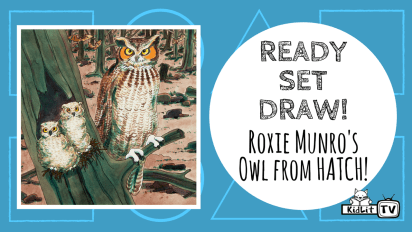 Ready Set Draw!   Roxie Munro's Owl from HATCH!