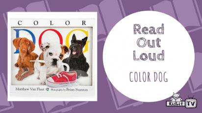 Read Out Loud: COLOR DOG with Matthew Van Fleet